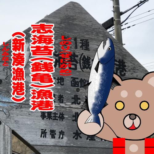 北海道(道南) 釣り場案内「志海苔(銭亀)漁港(新湊漁港)」ver.2
