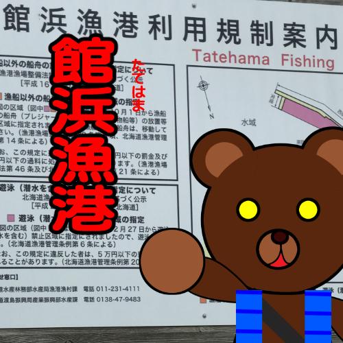 北海道(道南) 釣り場案内「館浜漁港」ver.2